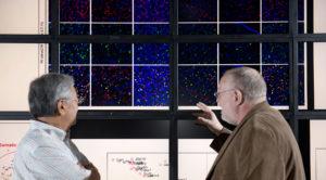 Data analytics faculty