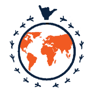 Experiential Learning Global and Intercultural Fluency Logo