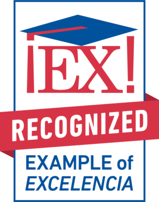 Example of Excelencia